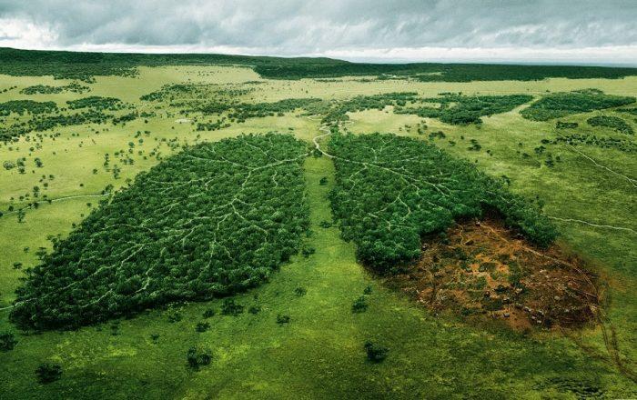 Carbon-free